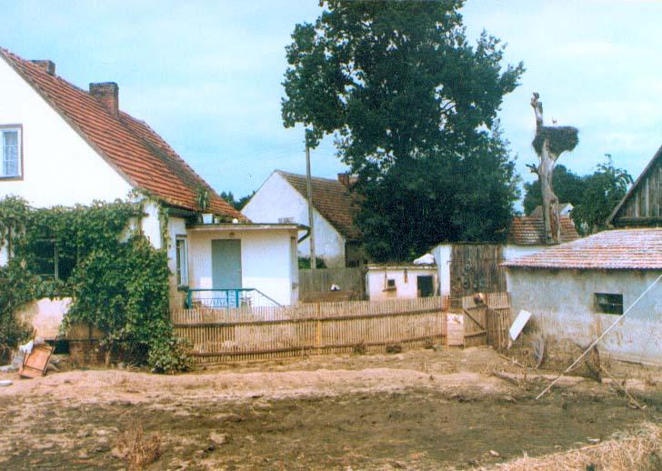 Nowe Kolnie. 3.08.1997