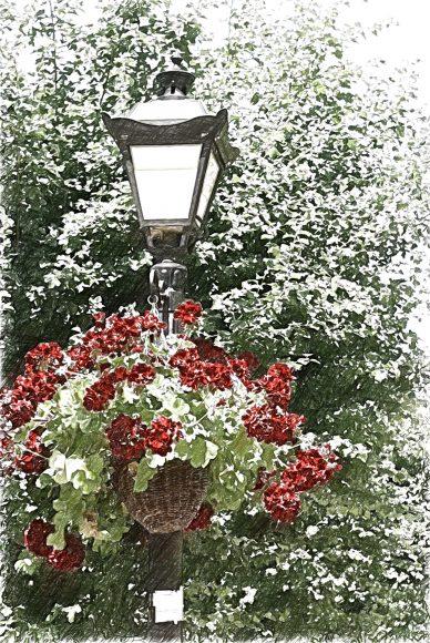 latarnia z kwiatami